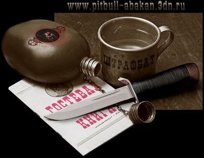 http://pitbull-abakan.3dn.ru/images_site/gostevaya.jpg